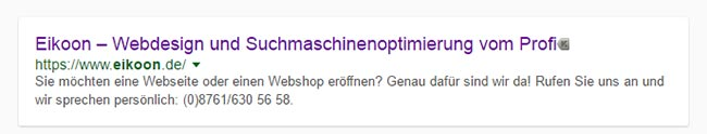 Search Snippet Google