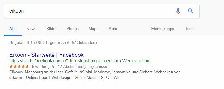 SERP aus der Google Suche